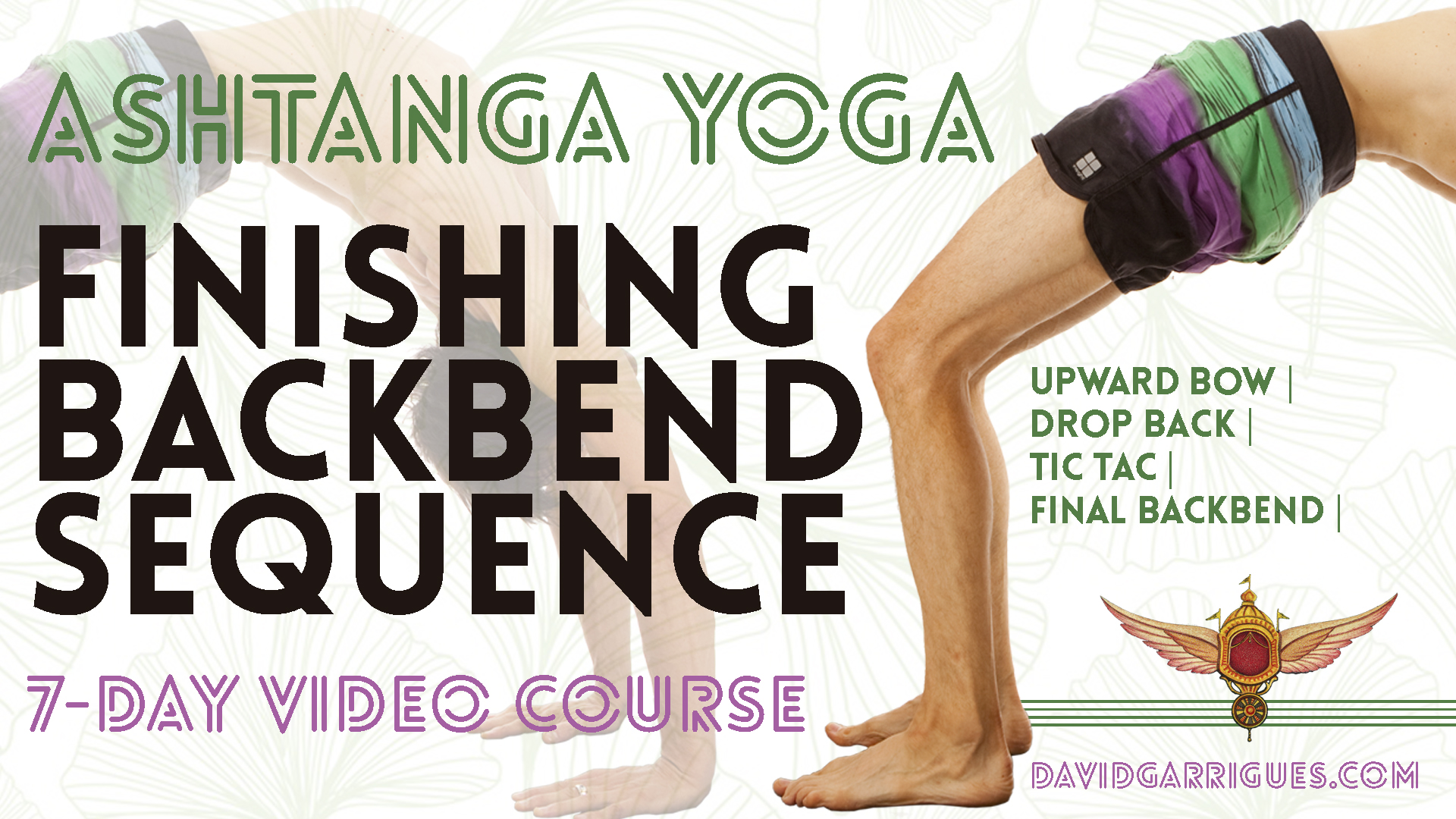 Finishing Backbend Video Course
