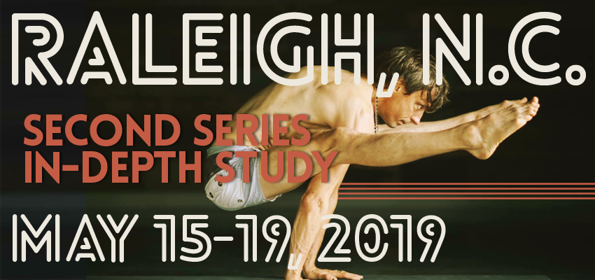 Raleigh, NC Second Series In-Depth Study