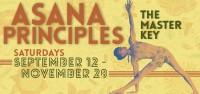 Asana Principles