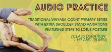 Traditional Vinyasa Count Primary Series with Extra Shoulder Stand Variations (1 hr and 35 min)