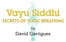 Secrets of Yogic Breathing Vayu Siddhi Book