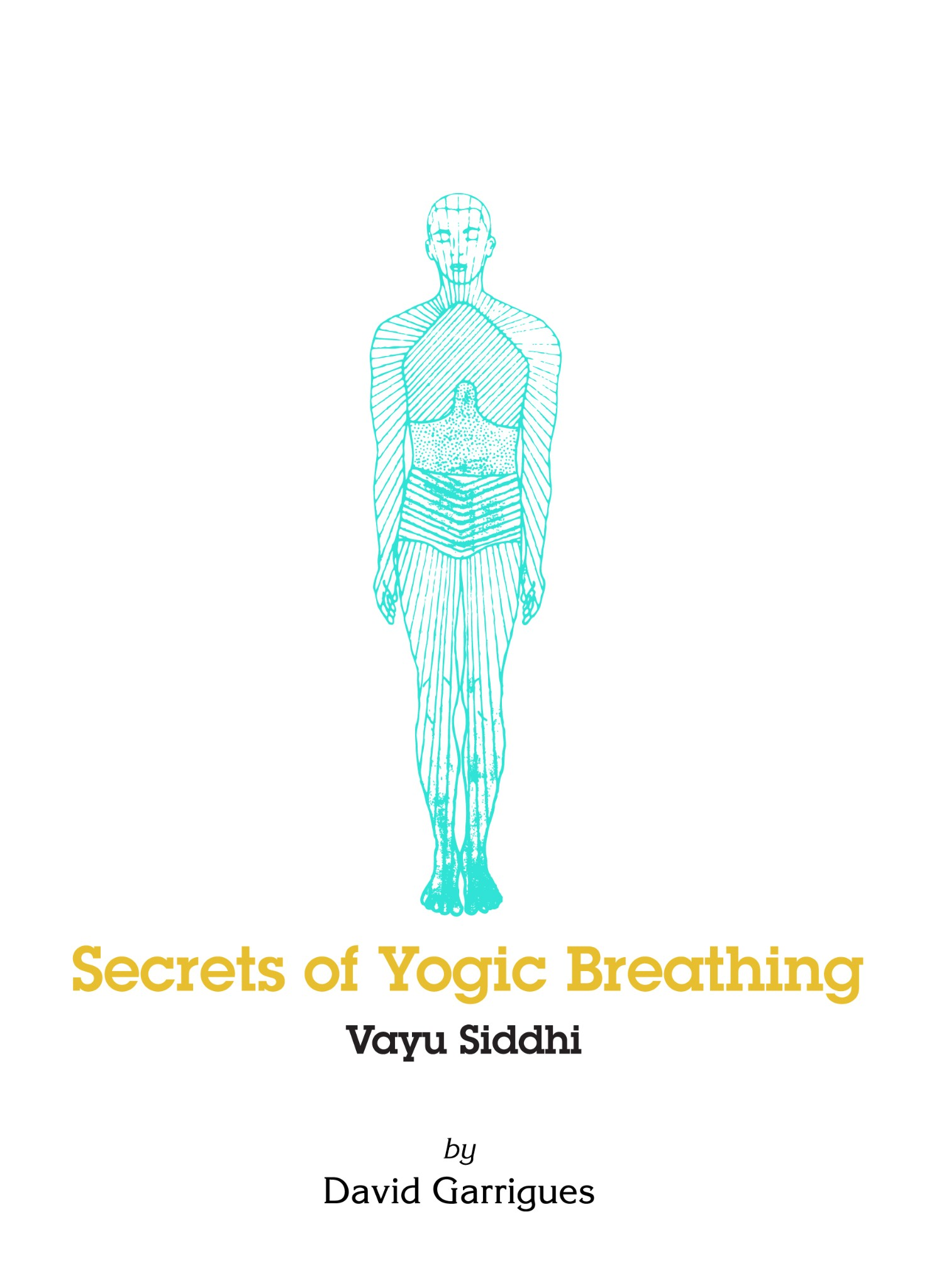 Secrets of Yogic Breathing Vayu Siddhi Book